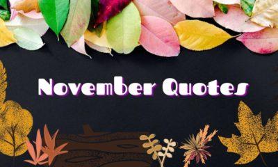 November Quotes