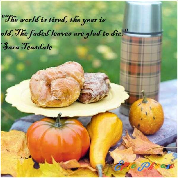 November Quotes 4