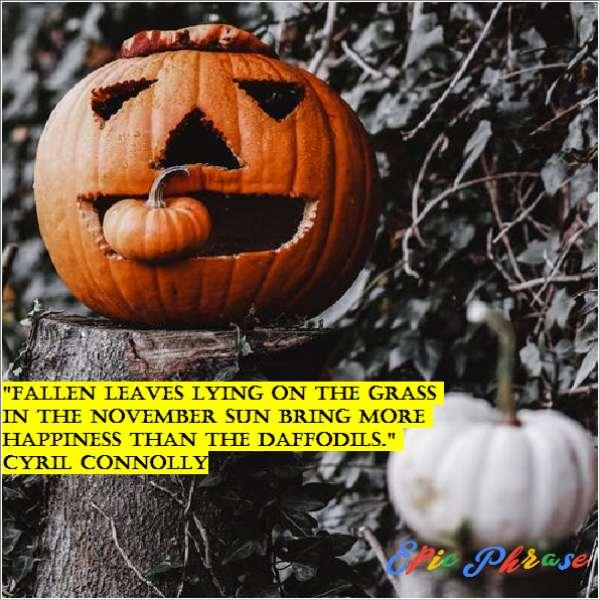 November Quotes 5