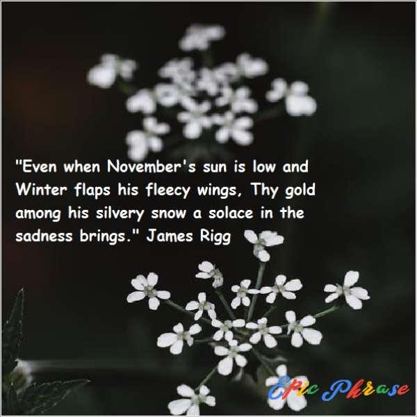 November Quotes 6