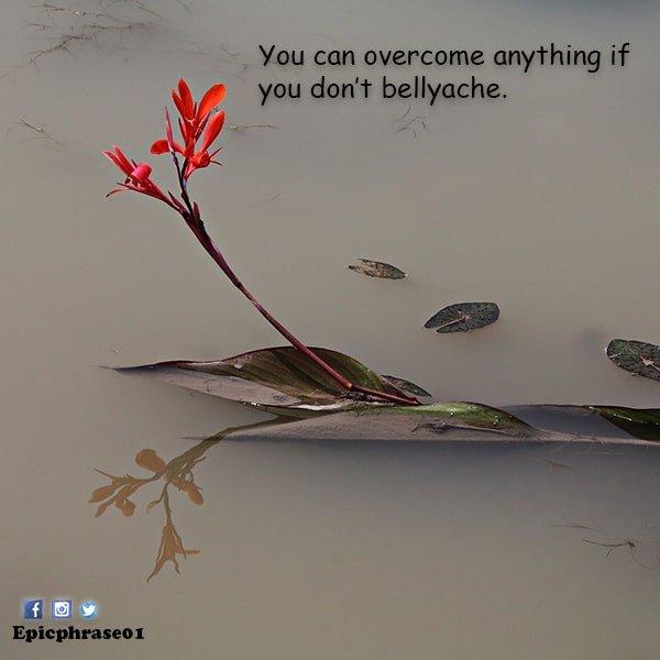 positive saturday quotes