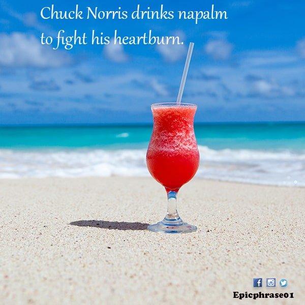 chuck norris jokes google