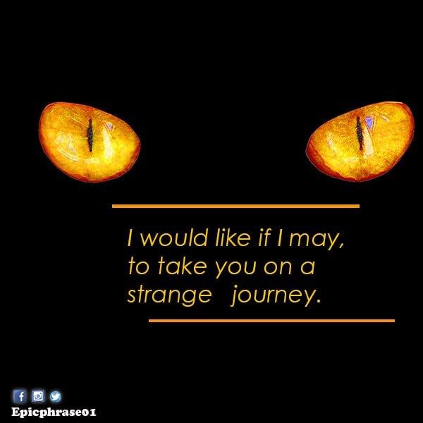halfway halloween quotes