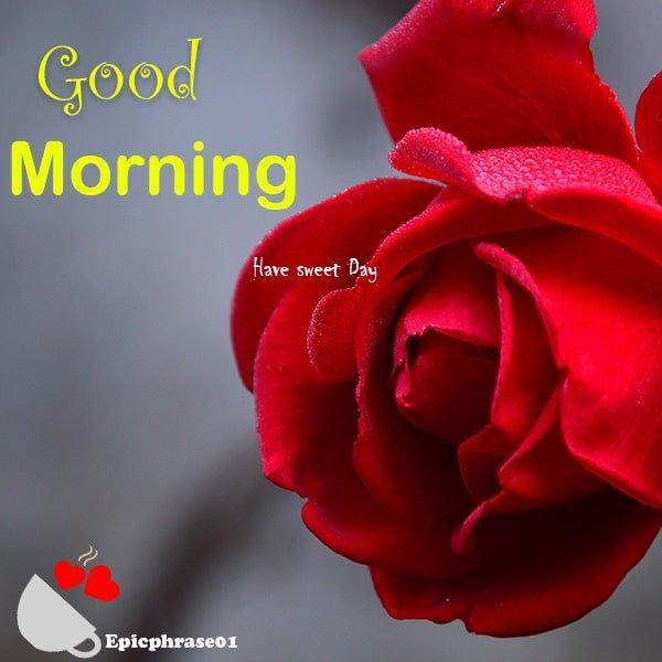 good morning images beautiful